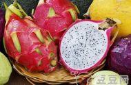 火龙果的功效与作用 火龙果的功效与作用及食用方法