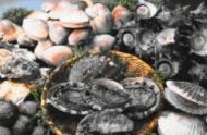 春天吃海鲜注意4个要点